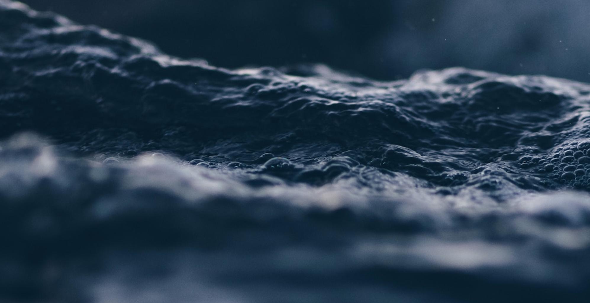 Technøcean : ces tracks techno qui résonnent dans les fonds marins
